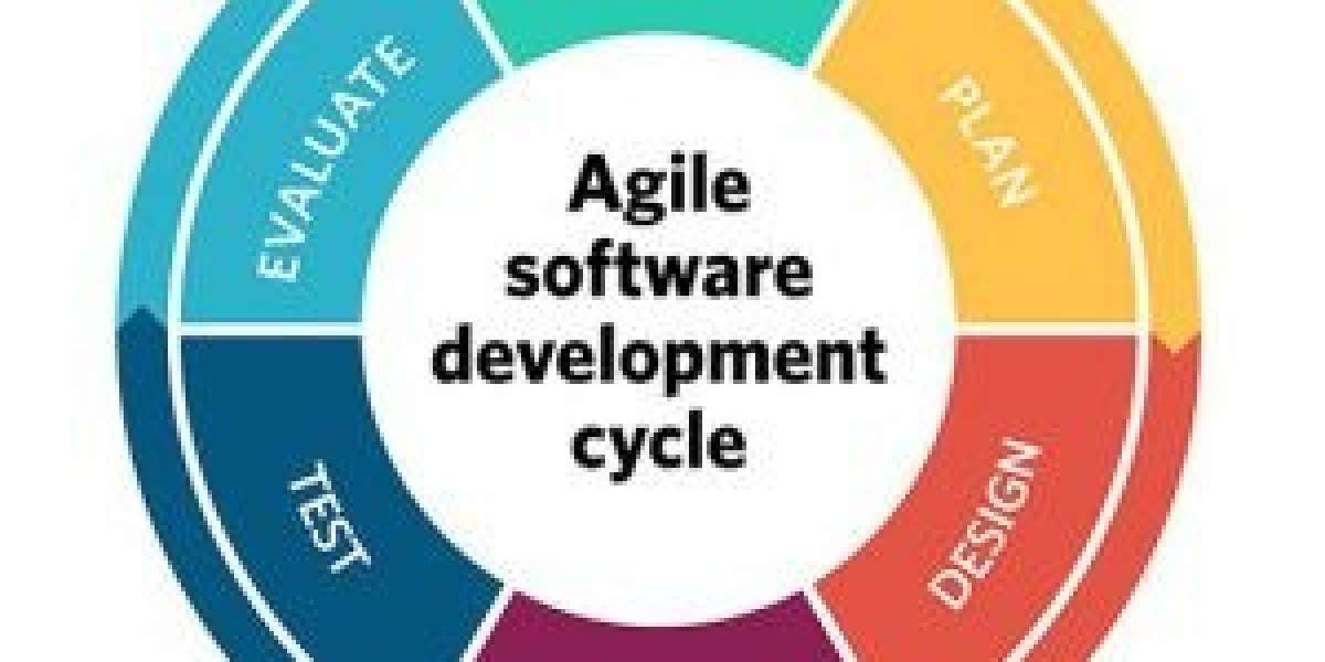 Challenges faced by organisations while Adopting Agile Software Development Methodologies